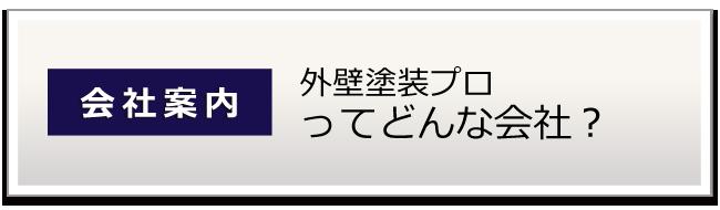 大阪 堺の外壁塗装プロってどんな会社 会社概要