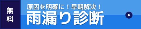 堺 大阪 無料 早期解決 原因を明確 堺市 プロ 雨漏り診断