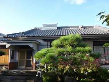 杉本さん、東野さんの講習内容が分かりやすかったです。特に河内さんの作業ぶりは近隣住民から賞賛がありました。